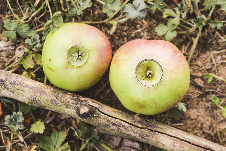 southwest wedding photography, wedmore wedding photos, vintage wedding photographer, summer weddings in somerset, wedding rings on apples