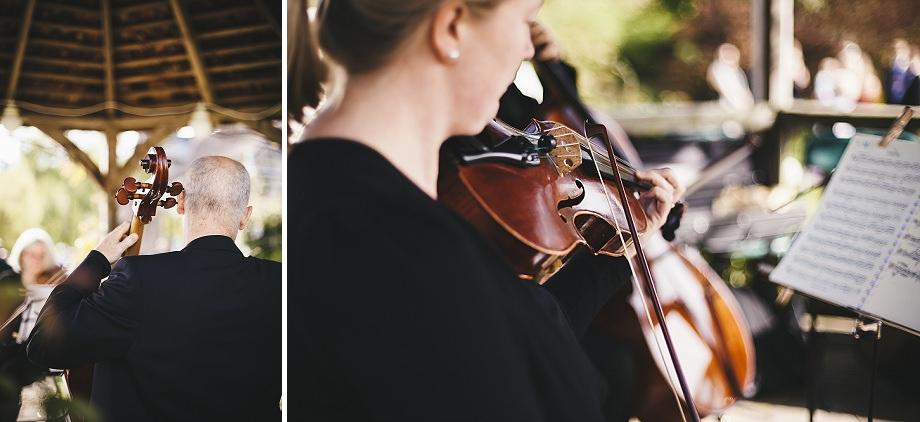 string quartet somerset