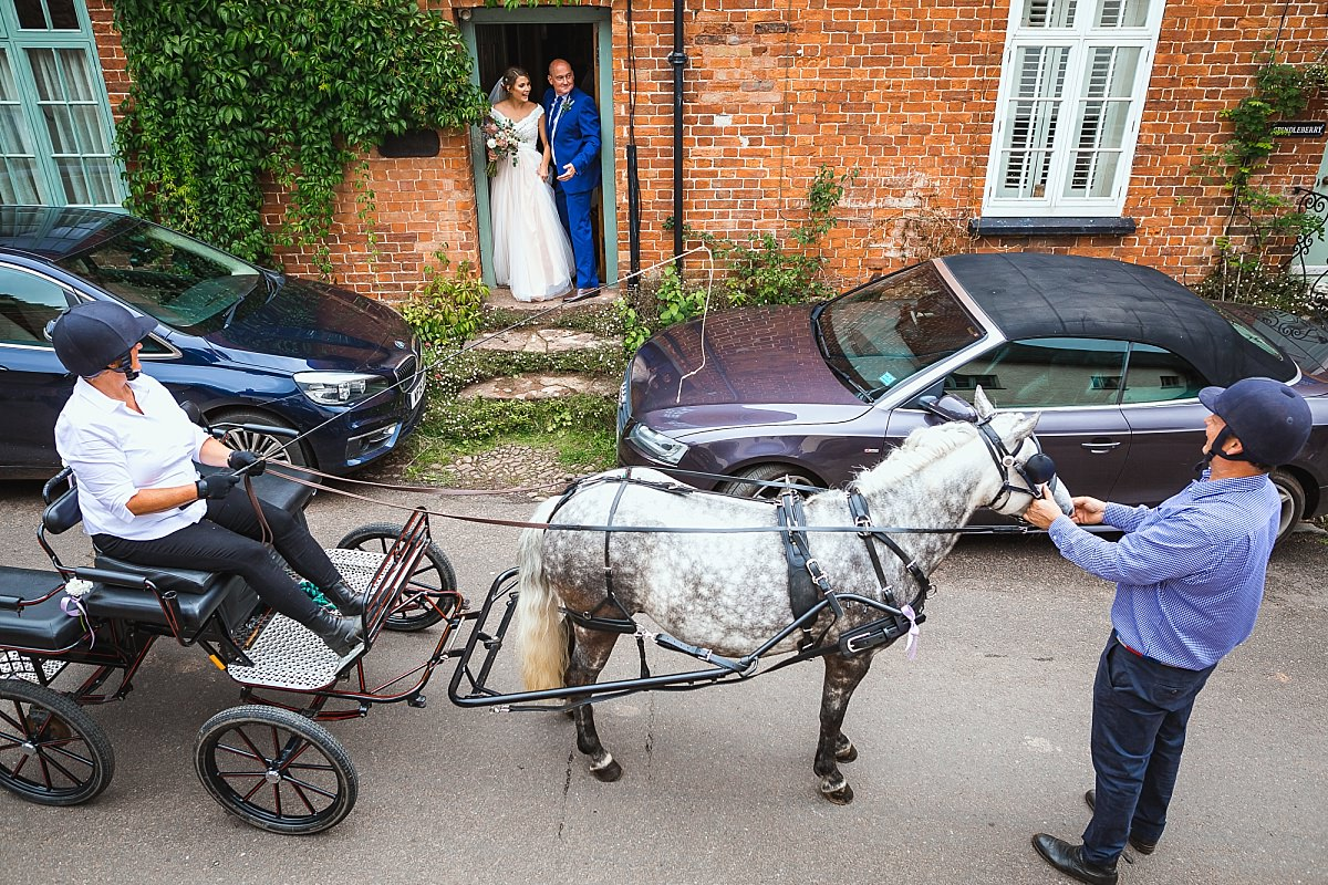 wedding horse and cart devon
